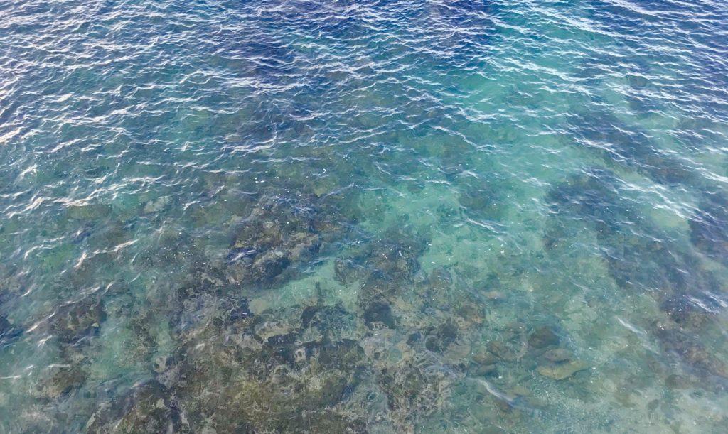 澄んだ冬の海