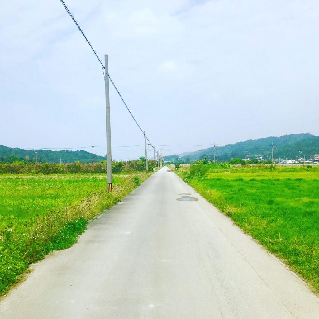 国頭村の田舎道