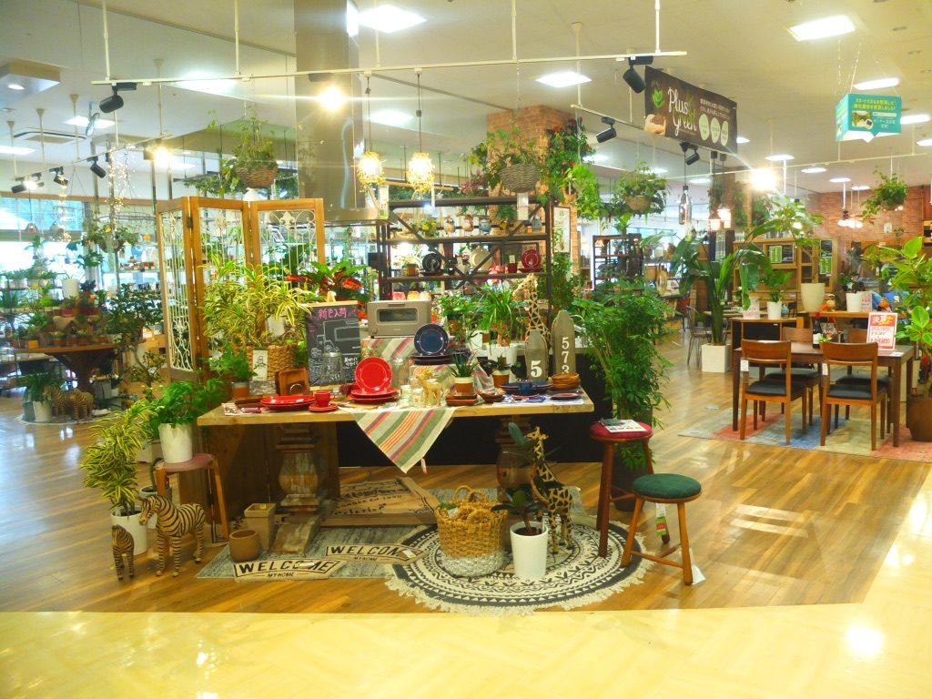 4つの家具のお店が集まるLiving Design SQUARE(沖縄)に行ってきました!