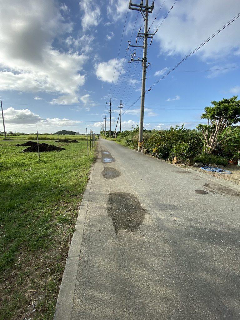 国頭村の畑と道路