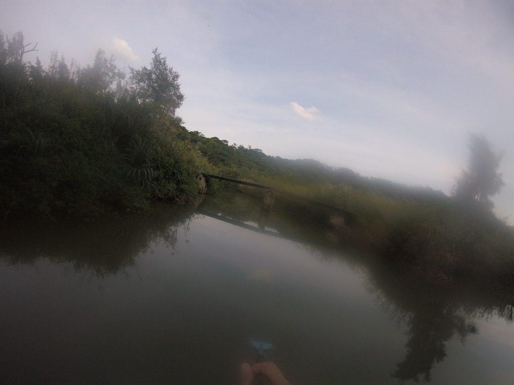 沖縄県国頭村東部の集落、安田で初SUP!海とマングローブの川を攻めるも。。。